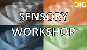 sensory-workshop-2