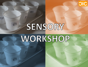 cic-sensory-workshop