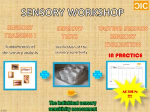 cic-sensory-workshop-info
