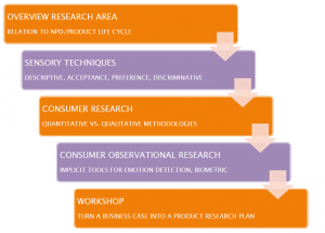 CIC program consumer insight research program