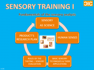 cic-sensory-training-i-info