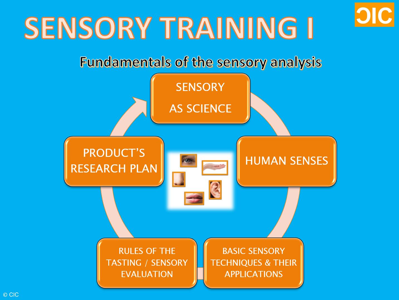 sensory training i