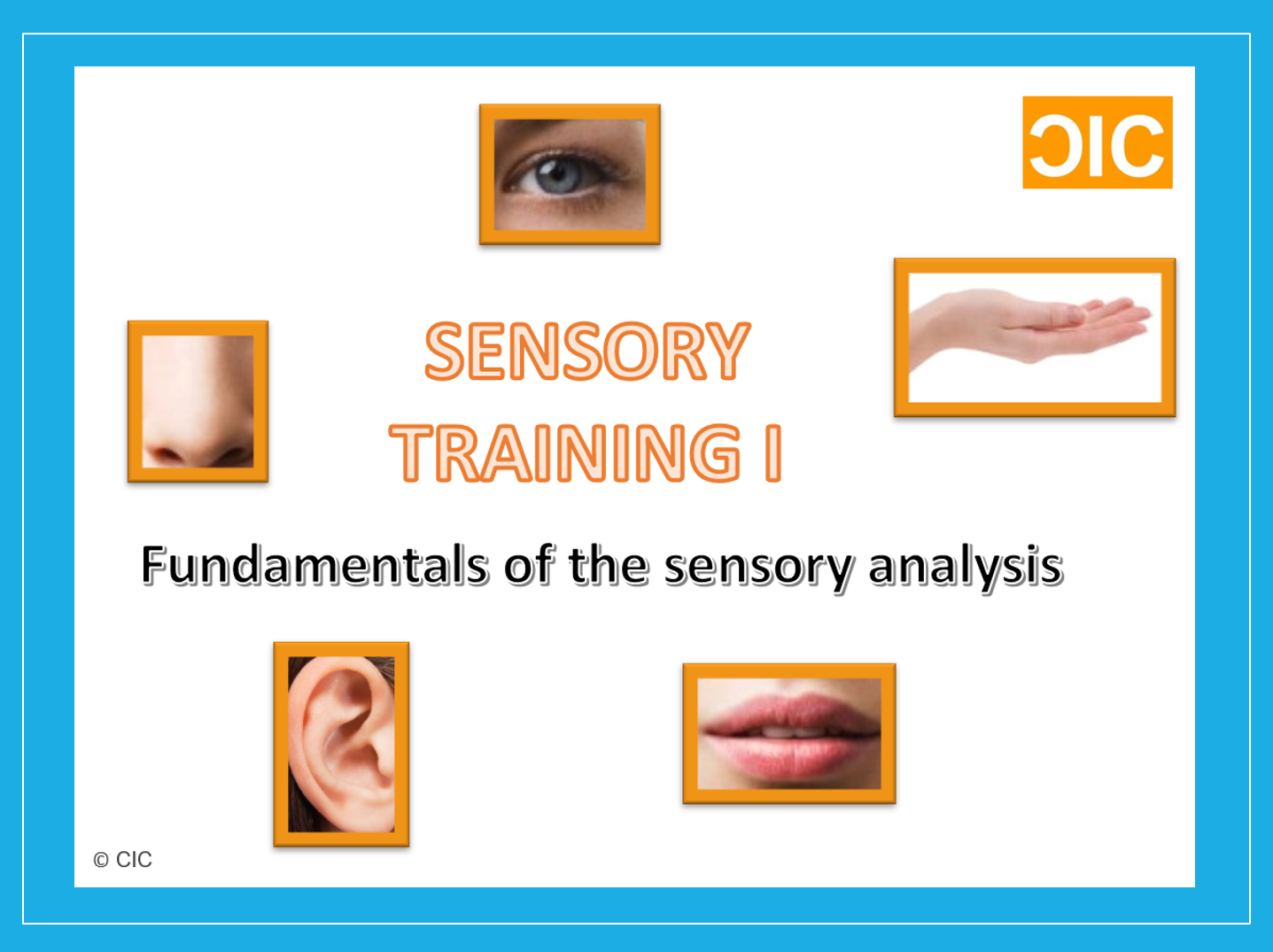 a study of sensory data Occupational therapy using a sensory integrative approach: a case study of effectiveness you will receive an email whenever this article is corrected, updated, or cited in the literature you can manage this and all other alerts in my account.