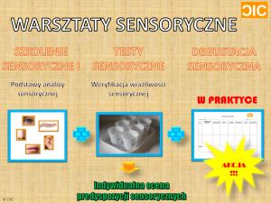 cic-warsztaty-sensoryczne-opis