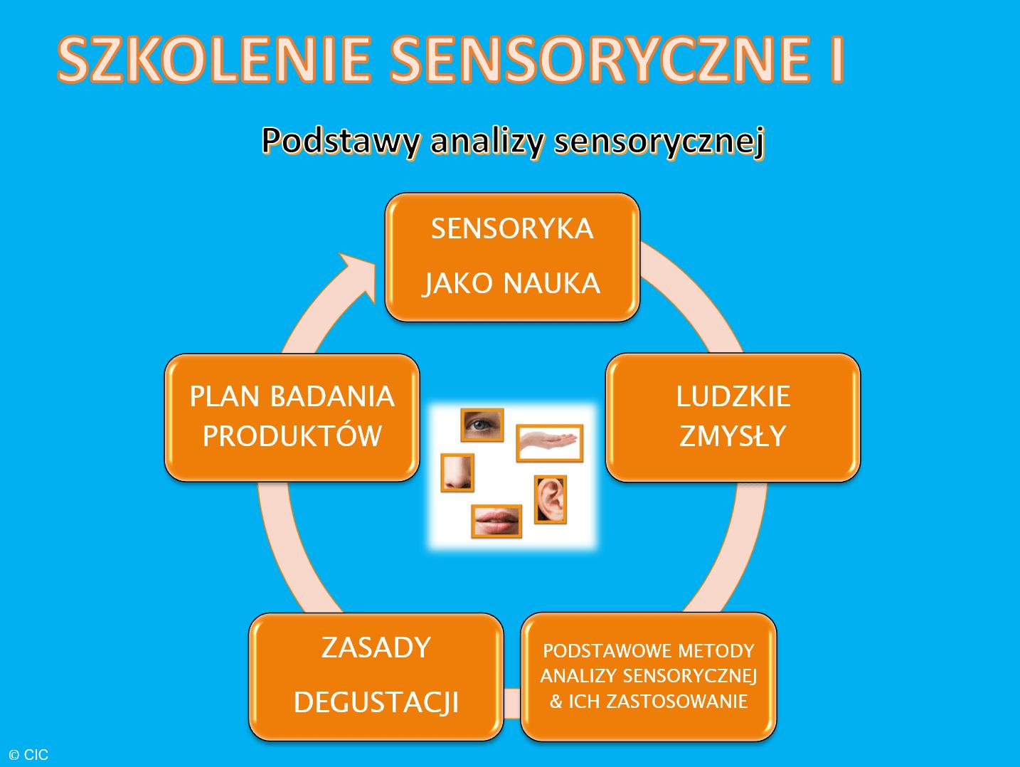 Szkolenie sensoryczne I