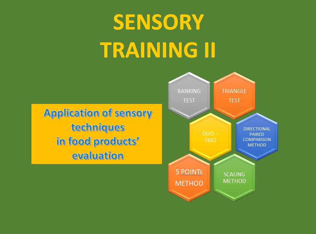 Sensory Training II